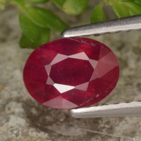 Red Ruby Gem - 1.4ct Oval Facet (ID: 466396)