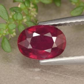 Red Ruby Gem - 1.4ct Oval Facet (ID: 466554)