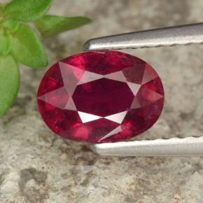 Red Ruby Gem - 1.4ct Oval Facet (ID: 466615)