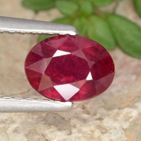 Red Ruby Gem - 1.3ct Oval Facet (ID: 466621)