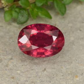 Pinkish Red Ruby Gem - 1.2ct Oval Facet (ID: 495508)