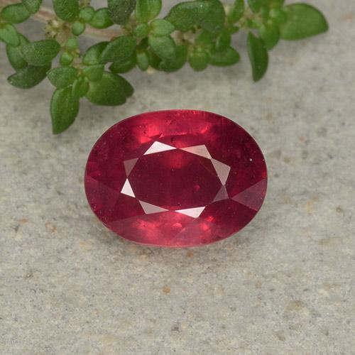 Blood Red Ruby Gem - 2.6ct Oval Facet (ID: 495825)