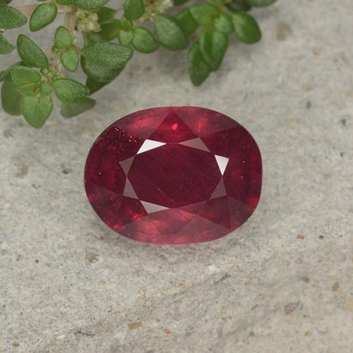 Medium Red Rubí Gema - 2.5ct Forma ovalada (ID: 495830)