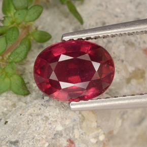 Bright Red Rubí Gema - 1.9ct Forma ovalada (ID: 496278)