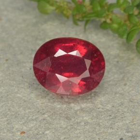 Blood Red Rubí Gema - 1.7ct Forma ovalada (ID: 496378)