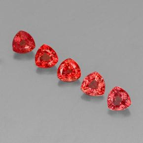 Bright Red Zafiro Gema - 0.4ct Forma trillón (ID: 330672)