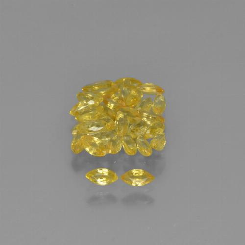 0.1ct Marquise Facet Yellow Golden Sapphire Gem (ID: 345606)