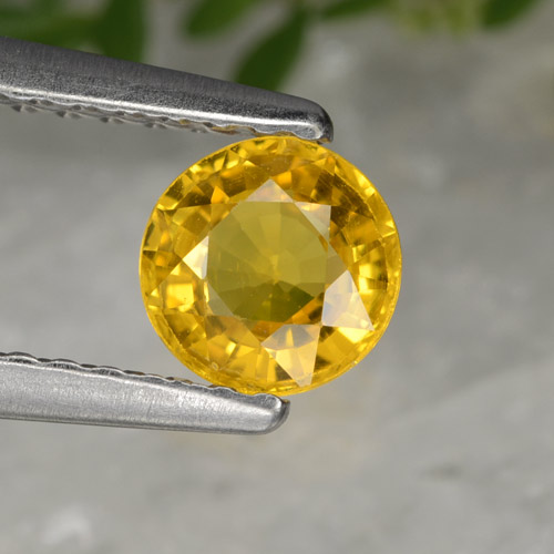 thumb image of 0.6ct Round Facet Yellow Golden Sapphire (ID: 358092)