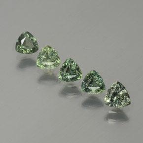 Green Sapphire Gem - 0.4ct Trillion Facet (ID: 375457)