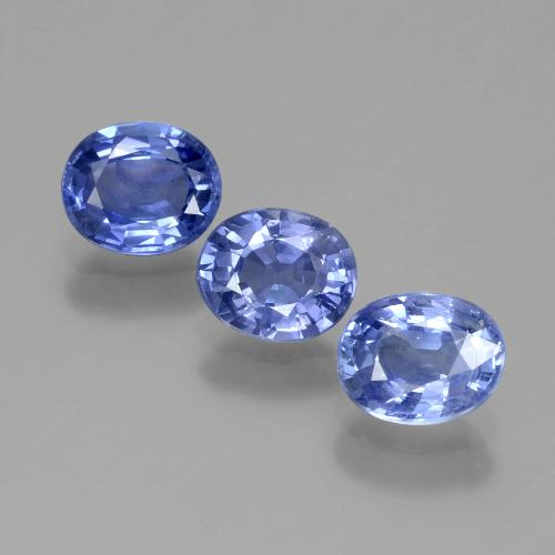 Blue Sapphire Gem - 0.8ct Oval Facet (ID: 389581)