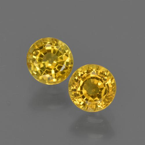 Honey Yellow Sapphire Gem - 0.5ct Round Facet (ID: 420802)