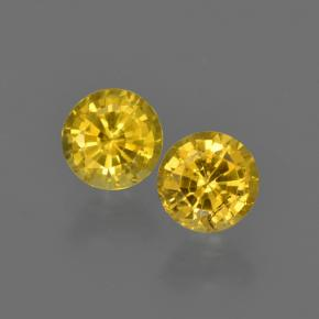Yellow Sapphire Gem - 0.5ct Round Facet (ID: 420805)