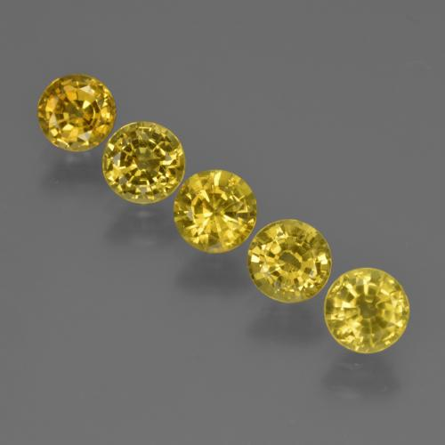 Yellow Sapphire Gem - 0.6ct Round Facet (ID: 421081)
