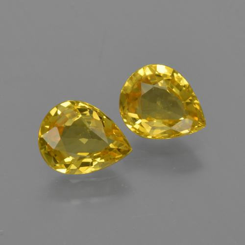 Light Honey Yellow Sapphire Gem - 0.6ct Pear Facet (ID: 421692)