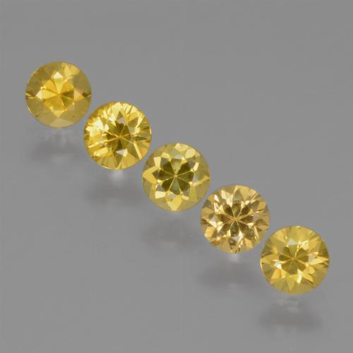 Yellow Golden Sapphire Gem - 0.3ct Diamond-Cut (ID: 425142)