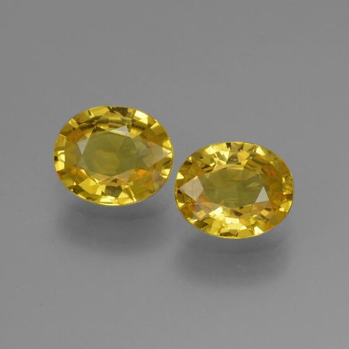 Yellow Golden Sapphire Gem - 0.8ct Oval Facet (ID: 443538)