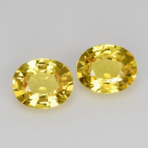 Yellow Golden Sapphire Gem - 0.7ct Oval Facet (ID: 443539)