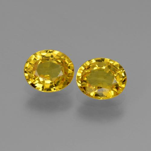 Yellow Golden Sapphire Gem - 0.8ct Oval Facet (ID: 443541)