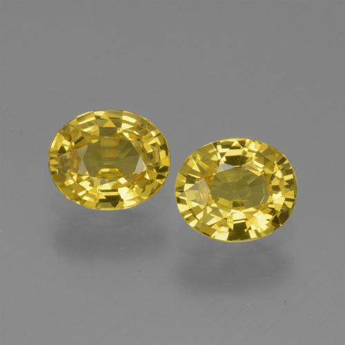 Yellow Golden Sapphire Gem - 0.7ct Oval Facet (ID: 443611)
