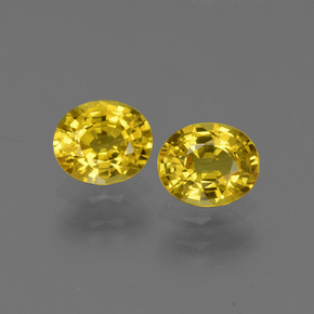 Autumn Yellow Sapphire Gem - 0.8ct Oval Facet (ID: 443806)