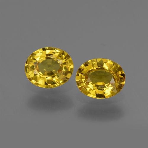 Yellow Golden Sapphire Gem - 0.7ct Oval Facet (ID: 443810)