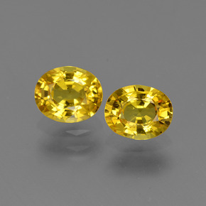 Yellow Golden Sapphire Gem - 0.8ct Oval Facet (ID: 443825)