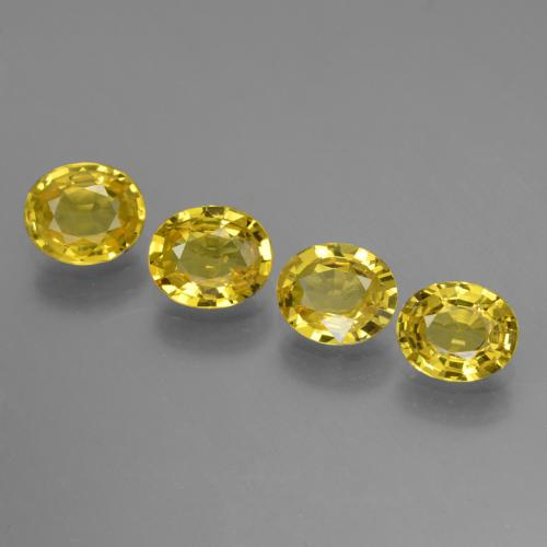 Yellow Golden Sapphire Gem - 0.7ct Oval Facet (ID: 443827)