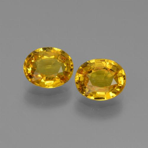 Yellow Golden Sapphire Gem - 0.8ct Oval Facet (ID: 444183)