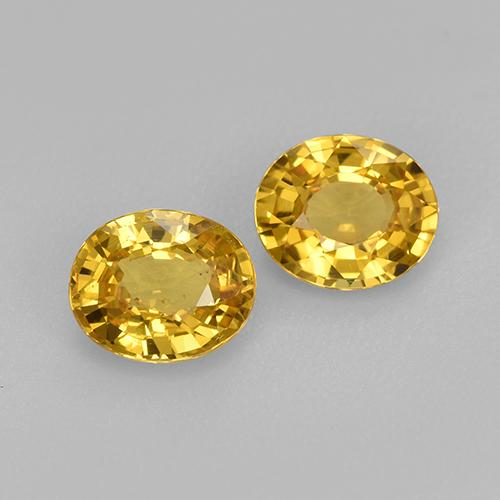 Golden Yellow Sapphire Gem - 0.8ct Oval Facet (ID: 444262)