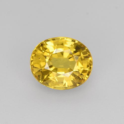 Golden Yellow Sapphire Gem - 0.9ct Oval Facet (ID: 444496)