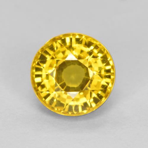 Honey Yellow Sapphire Gem - 0.7ct Round Facet (ID: 453275)
