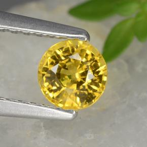 Golden Yellow Sapphire Gem - 0.6ct Round Facet (ID: 453435)