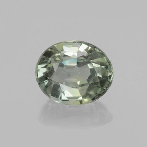 Greenish Grey Zaffiro Gem - 0.9ct Ovale sfaccettato (ID: 459891)