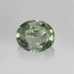 Forest Green Sapphire Gem - 0.7ct Oval Facet (ID: 459901)