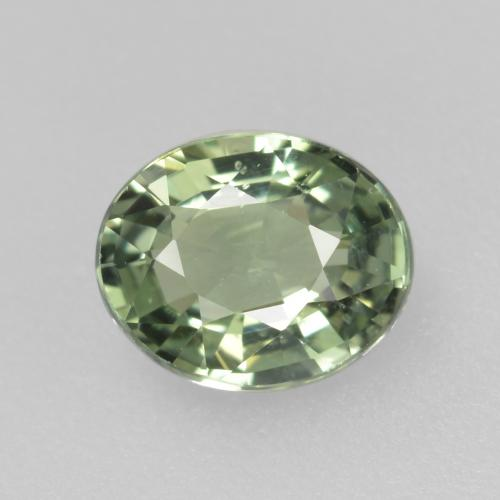 Medium Light Green Zaffiro Gem - 0.8ct Ovale sfaccettato (ID: 459966)