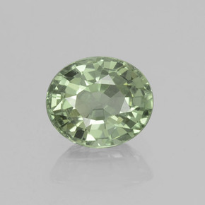 Medium Light Green Sapphire Gem - 0.9ct Oval Facet (ID: 460015)