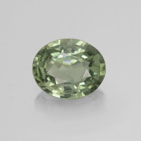 Earthy Green Sapphire Gem - 0.7ct Oval Facet (ID: 460018)