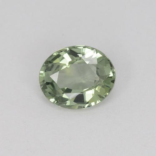 Green Sapphire Gem - 0.8ct Oval Facet (ID: 460022)