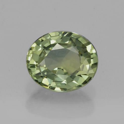 Forest Green Sapphire Gem - 0.8ct Oval Facet (ID: 460050)