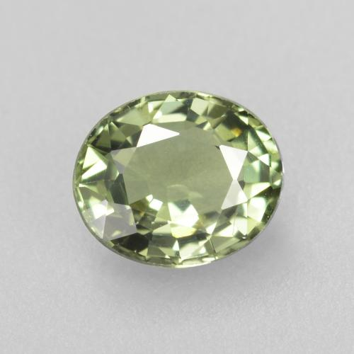 Light Forest Green Zaffiro Gem - 0.7ct Ovale sfaccettato (ID: 460052)
