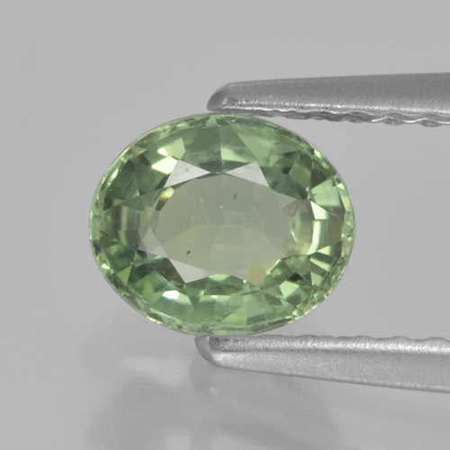 Mossy Green Sapphire Gem - 0.8ct Oval Facet (ID: 460056)