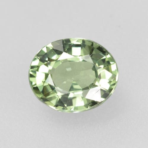 Light Sage Green Sapphire Gem - 0.8ct Oval Facet (ID: 460086)
