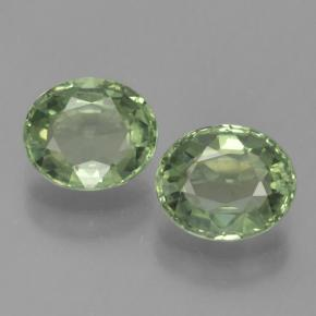 Green Sapphire Gem - 0.8ct Oval Facet (ID: 460094)