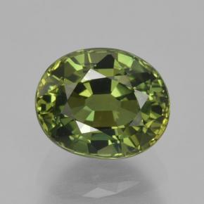 Yellowish Green Sapphire Gem - 1.6ct Oval Facet (ID: 461206)