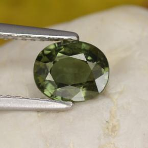 Green Sapphire Gem - 1.4ct Oval Facet (ID: 461209)
