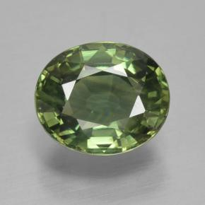 Green Sapphire Gem - 1.3ct Oval Facet (ID: 461211)