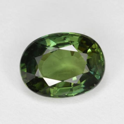 Forest Green Sapphire Gem - 1.1ct Oval Facet (ID: 461320)