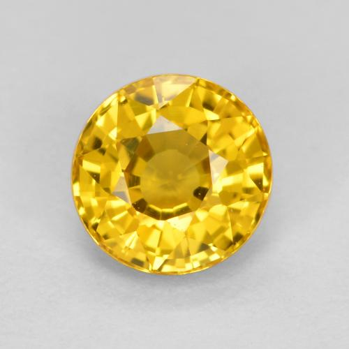 Light Honey Yellow Sapphire Gem - 0.7ct Round Facet (ID: 461889)