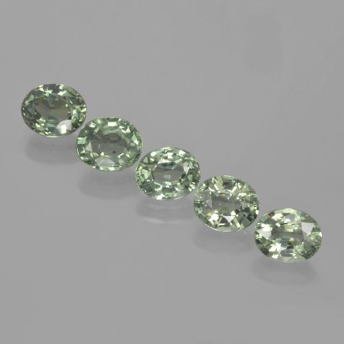Green Sapphire Gem - 0.8ct Oval Facet (ID: 462654)