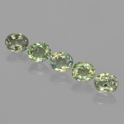 Green Sapphire Gem - 0.9ct Oval Facet (ID: 462655)